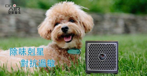 寵物空氣清淨機推薦怡可淨